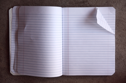 blank_pages_in_an_open_notebook_28481226915129